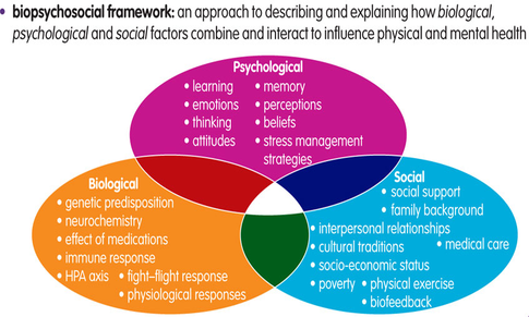 explain the 5 broad social and emotional aspects of learning Social and emotional aspects of learning (seal) is a comprehensive, whole-school approach to promoting the social and emotional skills that underpin effective learning, positive behaviour.